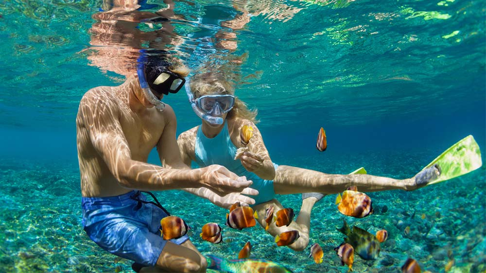 best time to book all inclusive trips